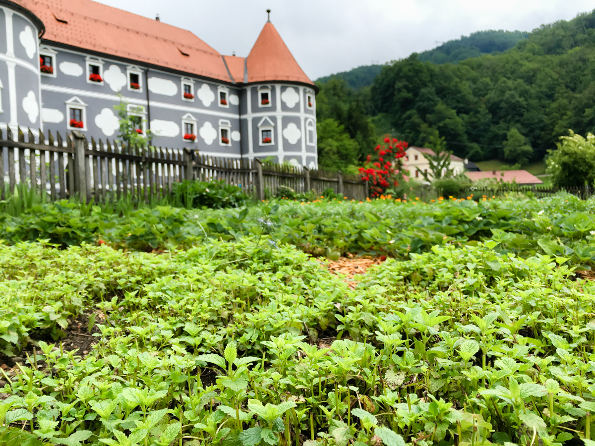 MISS_Claire_Tour_Slovenia_IV-1016