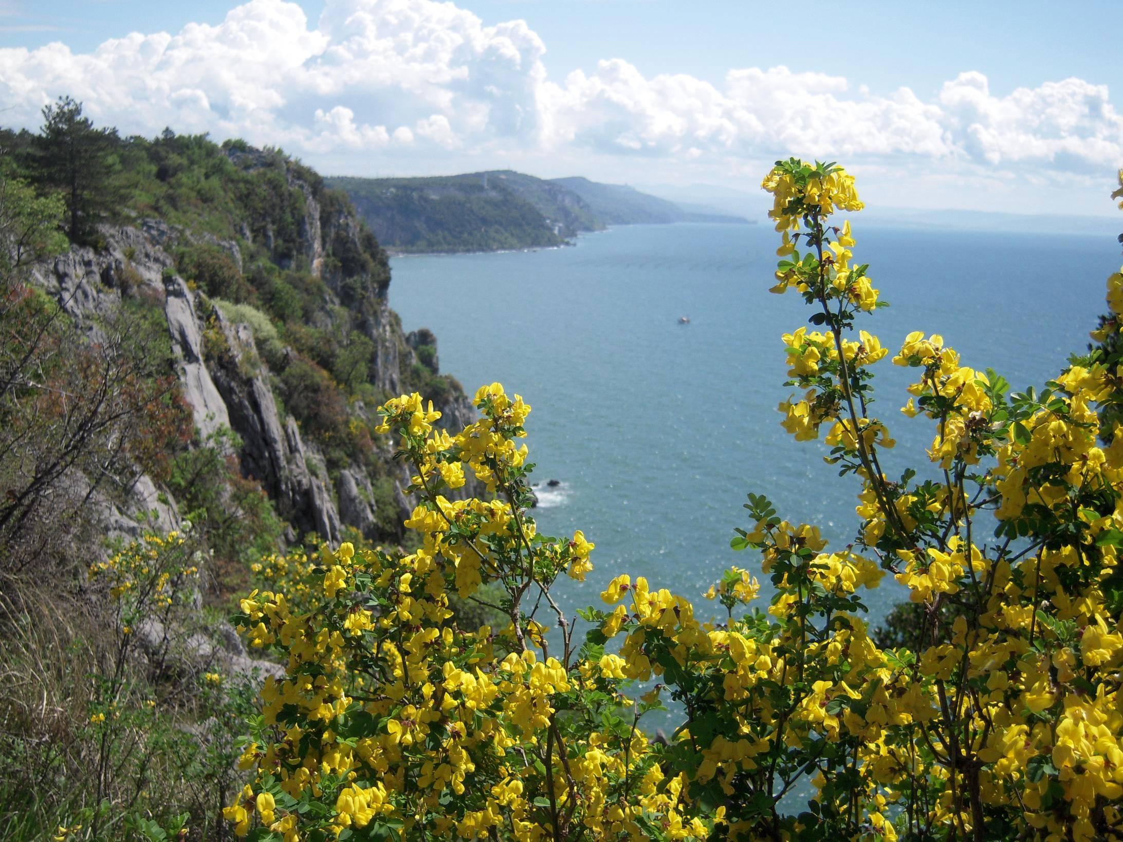 costiera Trieste_Aurisina_2_CDN