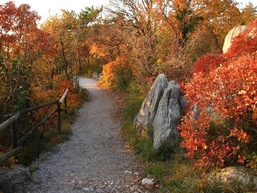 sentiero-rilke1