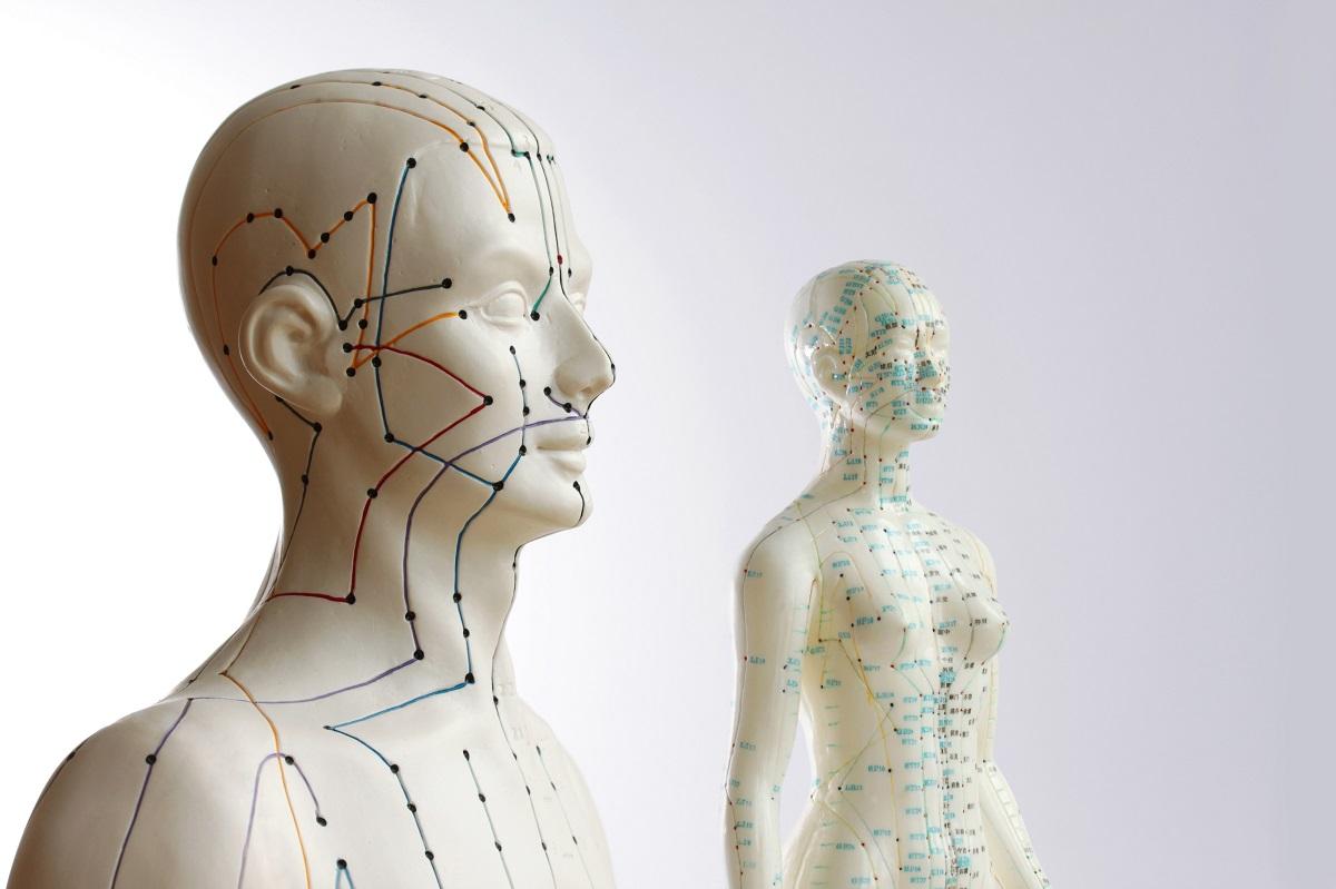 Akupunktur-Model 4